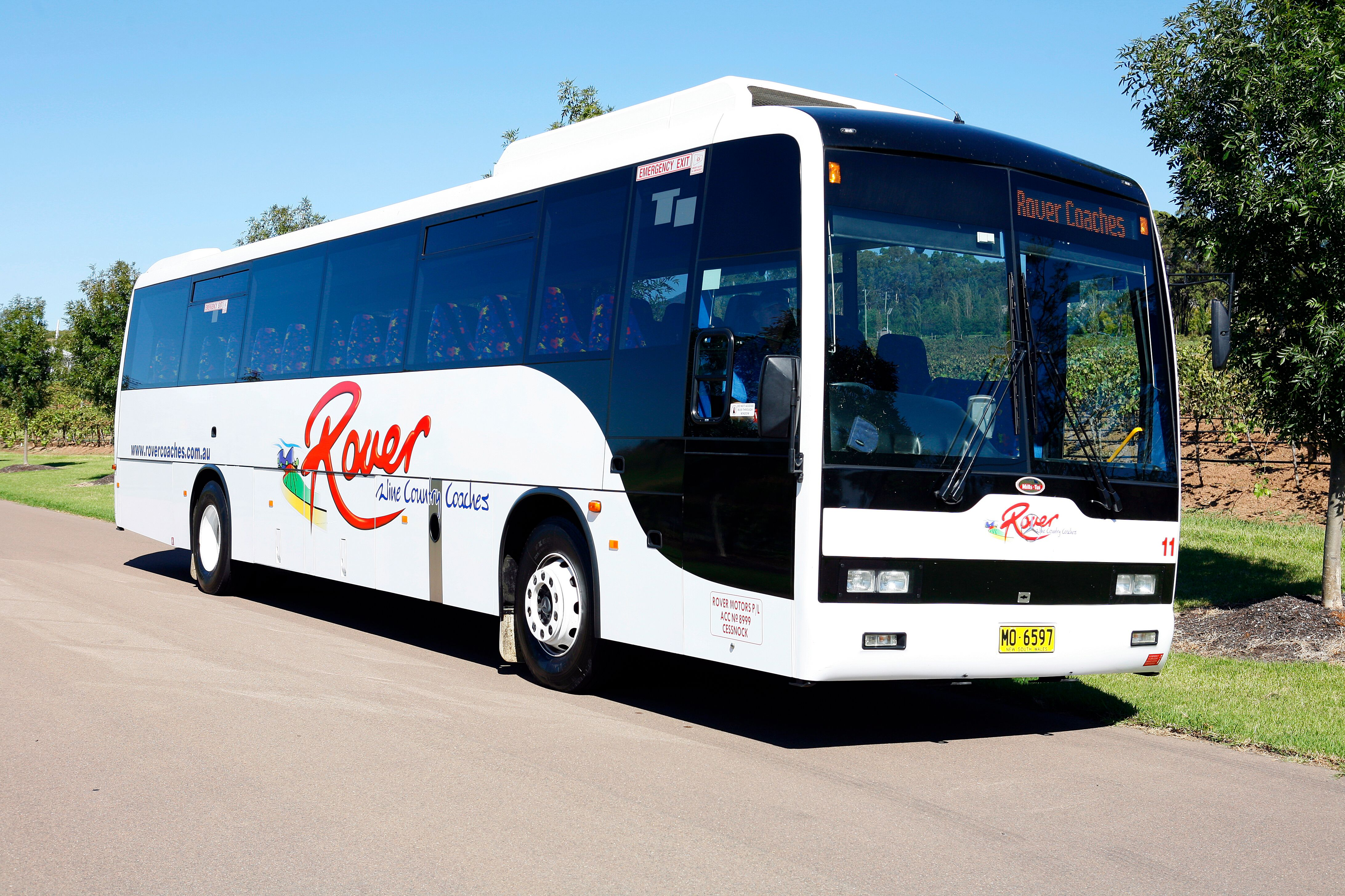 SCHOOL BUSES - Outstanding Fleet Of New & Modern School Buses
